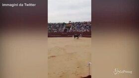 Spagna, muore volontario 60enne incornato da un toro alla corrida