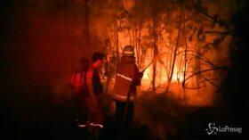 Emergenza incendi, brucia anche l'Indonesia